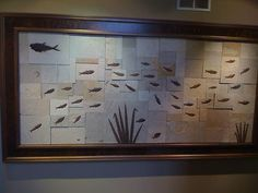 Fossil Fish Mural in mosaic 50 million year old specimens