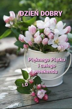 Plants, Good Morning, Pictures, Polish, Funny Stuff, Plant, Planets