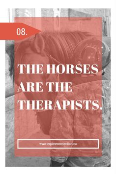 """""""The horse knows - He knows if you know - He also knows if you don't know."""" Ray Hunt"""