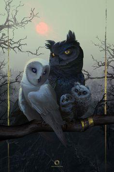 Owl Family Portrait by EranFolio