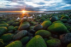 Emerald beach by Siggi B on 500px  Hvaleyri rocky beach Hafnarfjörður Iceland #Green #Iceland #Icelandic #Landscapes #Ocean #Rocks #Sunset