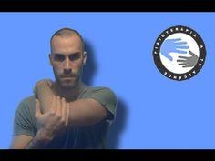 Deltoides posterior, estiramientos y anatomía para el hombro / Fisioterapia a tu alcance
