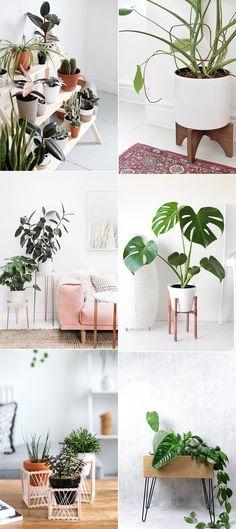 we love Inspiration: Pflanzenständer-DIYs - we love handmade Wood Plant Stand, Plant Stands, Corner Plant, Lawn And Landscape, Plant Shelves, Hanging Plants, Amazing Gardens, Flower Pots, Flowers