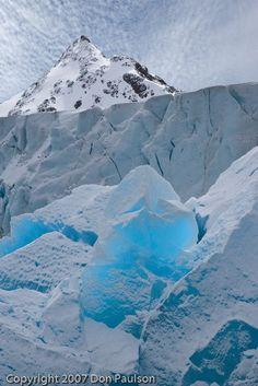 South Georgia Island, Antarctica,by Photographer Don Paulson