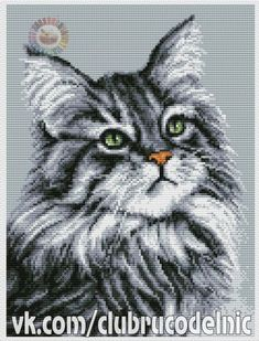 ВЫШИВКА <РАЗНОЕ> | Мари Мари | Идеи и фотоинструкции бесплатно на Постиле Cat Cross Stitches, Cross Stitch Art, Cross Stitch Needles, Cross Stitch Animals, Counted Cross Stitch Patterns, Cross Stitch Designs, Cross Stitching, Cross Stitch Embroidery, Hamster