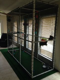 Walk in glider cage. If I had one of these I could play with the gliders without worrying about the kitten getting too excited Sugar Glider Diet, Sugar Glider Care, Sugar Glider Pouch, Sugar Gliders, Chinchilla Cage, Ferret Cage, Pet Bird Cage, Pet Ferret, Bird Perch