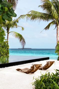 ... il paradiso | Floeme