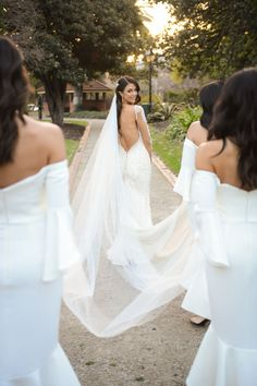 Bridesmaids Carrying Veil