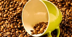 If green coffee can be terrain along with roasted similar to typical coffee, it's almost no tastes. In fact, coffee festered together with green coffee beans will be very poisonous. Consequently, individuals that wish to try this compound for weight loss could possibly favor having a green coffee bean extract supplement rather than having something without having flavor or a bitter annoying flavor.