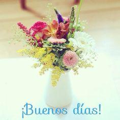 ¡Qué mejor que empezar el día con unas bonitas flores! ¡Feliz Viernes!