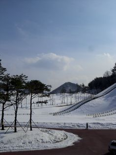 Winter of Alpensia Resort, Feb 2012