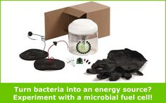 """Microbial Fuel Cells: On the Hunt for Renewable Energy"": Dirty water or mud for energy? Experiment with a microbial fuel cell student #science project! [Source: Science Buddies, http://www.sciencebuddies.org/blog/2014/03/microbial-fuel-cells-on-the-hunt-for-renewable-energy.php?from=Pinterest] #STEM #scienceproject #altenergy #sciencekit"