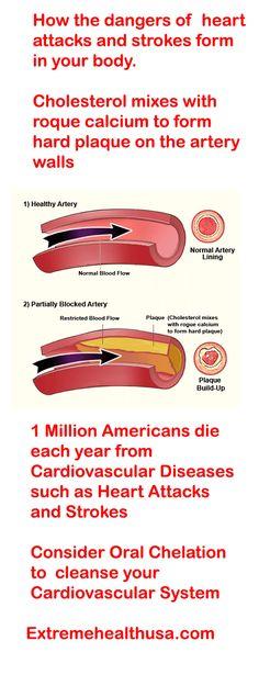 Pinna Labeled Anatomy Of The Pinna Auricle Otolaryngology