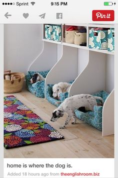 great doggy cubbies!