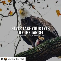 with ・・・ Keep Your Eyes On The Target 🎯 Eye Quotes, Rich Quotes, Target Quotes, Motivational Quotes For Success, Inspirational Quotes, Good Morning Beautiful Quotes, Ambition Quotes, Gentleman Quotes, Mindset Quotes