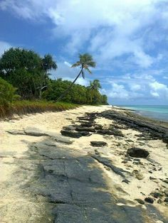 See 3 photos from 8 visitors to mystery island vanuatu. Mystery Island Vanuatu, Holiday Places, Countries Of The World, Holidays, Country, Beach, Water, Outdoor, Gripe Water