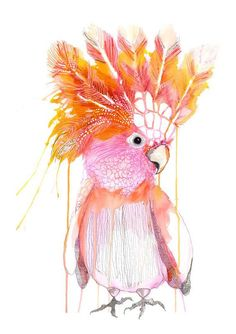 Gillian - Grotti Lotti Framed in girls bedroom would be cute! Australian Animals, Australian Art, Illustrations, Illustration Art, Bird Artwork, Reno, Watercolor Art, Watercolor Portraits, Watercolor Landscape