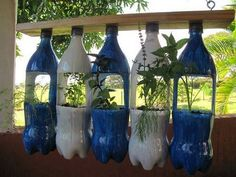 17 Genius DIY Recycled Plastic Bottle Gardens You Need to See - The ART in LIFE