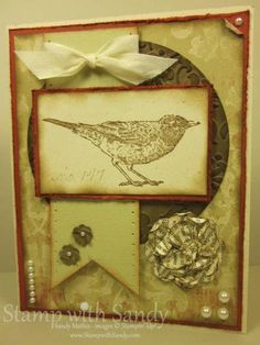 TSSC191 and Nature Walk by stampwithsandy - Cards and Paper Crafts at Splitcoaststampers