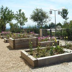 matières d'école projet classe jardins : un petit jardin dans la tete
