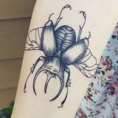 Rhino beetle! First tattoo for the lovely @aroundforever ! ▪️ #pdxtattoo #portland tattoo #pdx #portland #oregon #insect #rhinobeetle #blackandgreytattoo #blackink #blackwork #blackworkers #blxckink #linework #girlswithink #girlswithtattoos #ladytattooers #tattoooftheday #picoftheday #instagood #tattooartist #lovemyjob #firsttattoo #yay