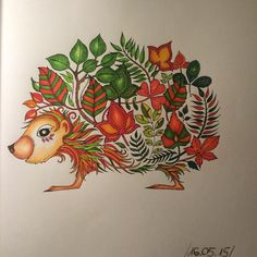 """#secretgarden #tajemnyogród #enchantedforest #johannabasford #kolorowanie #colouring #colouringbook #kolorowanka #colouringpages"""