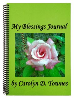The Blessings Journal helps you remember your blessings in the midst of pain and loss; even when your voice of doubt and fear is louder than your voice of faith. Quiet those limiting beliefs with the evidence you gather in your own Blessings Journal.