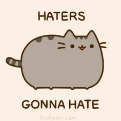 Haters gonna hate! Pusheen the cat