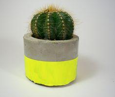 Neon Yellow Modern Concrete Planter with Cactus