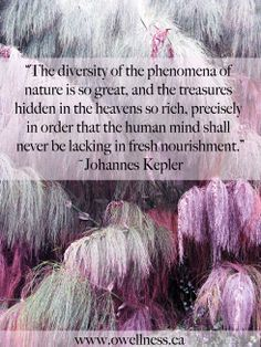 """The diversity of the phenomena of nature is so great, and the treasures hidden in the heavens so rich, precisely in order that the human mind shall never be lacking in fresh nourishment."" ~ Johannes Kepler"