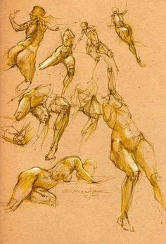 https://scontent-frt3-1.xx.fbcdn.net/hphotos-xat1/v/t1.0-9/11934999_385675048299027_298187610284449929_n.jpg?oh=e914a2962f17b7fef668943215c4f761&oe=578E9630 Arm Drawing, Body Drawing, Gesture Drawing, Life Drawing, Face Anatomy, Anatomy Art, Anatomy Drawing, Figure Sketching, Figure Drawing Reference