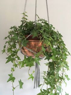 Step by step guide on how to make a simple easy plant hanger planthanger