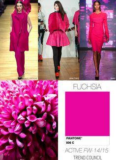 I Love Fuchsia
