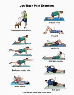 Ejercicios para evitar el dolor de espalda.