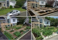 Embedded image permalink GROW FOOD, NOT GRASS