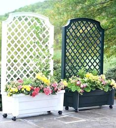 Enjoy your relaxing moment in your backyard, with these remarkable garden screening ideas. Garden screening would make your backyard to be comfortable because you'll get more privacy. Outdoor Privacy, Backyard Privacy, Backyard Patio, Backyard Landscaping, Balcony Privacy, Pergola Patio, Garden Privacy, Pergola Kits, Pergola Ideas