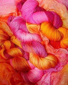 Fushia et orange Magenta, Rose Fushia, Rose Orange, Coral, Orange And Purple, Pink Yellow, Bright Pink, Pink Color, Pink And Gold