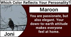 Which Color Reflects Your Personality?