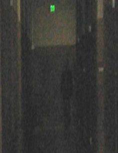 Ghost Photo Of A Full Body Appartion!  Best Ghost Photo Of The Yea