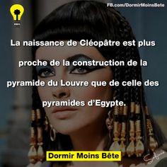 La naissance de Cléopâtre est plus proche de la construction de la pyramide du Louvre que celle des pyramides d'Égypte.