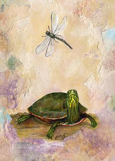 Painted Turtle And Dragonfly Print By Darlene Fletcher