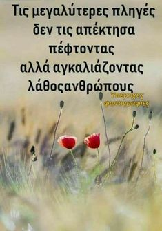 Greek Quotes, True Words, Forgiveness, Life Lessons, Favorite Quotes, Life Is Good, Psychology, Life Quotes, Inspirational Quotes