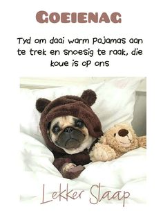 Afrikaanse Quotes, Goeie Nag, Good Night Messages, Good Night Sweet Dreams, Sleep Tight, Teddy Bear, Warm, Beautiful Landscapes, Gallery
