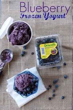 Blueberry Frozen Yogurt from KatiesCucina.com