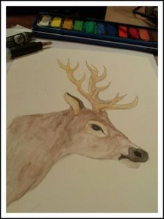 #drawing #deer #watercolor Deer, Moose Art, Watercolor, Drawings, Animals, Animales, Watercolor Painting, Animaux, Sketch