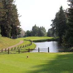 Golfclub Petersberg...Südtirols ältester Golfplatz