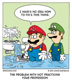 Some stuff is easy - anybody can replace a flapper - but please, please call a plumber for anything extensive!