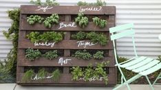 Herb Garden Pallet, Diy Herb Garden, Herb Garden Design, Pallets Garden, Garden Ideas, Pallet Gardening, Palette Herb Garden, Vegetable Gardening, Vertical Pallet Garden