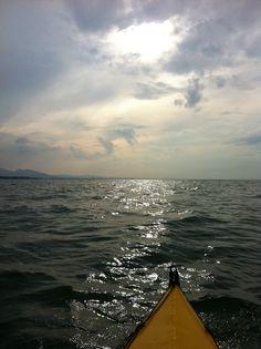 Der Sonne entgegen am Bodensee
