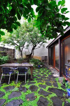 手前の木はハクモクレンで春先にきれいな花を咲かせる。雨で色が濃くなった庭石とその周りの緑との対比が美しい。
